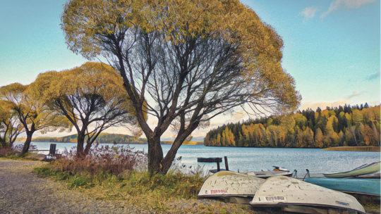 Der Herbst im Süden Finnlands
