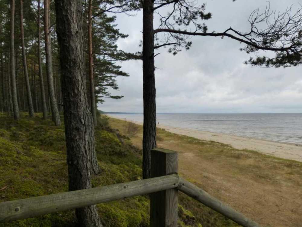 Strandwanderung im Baltikum