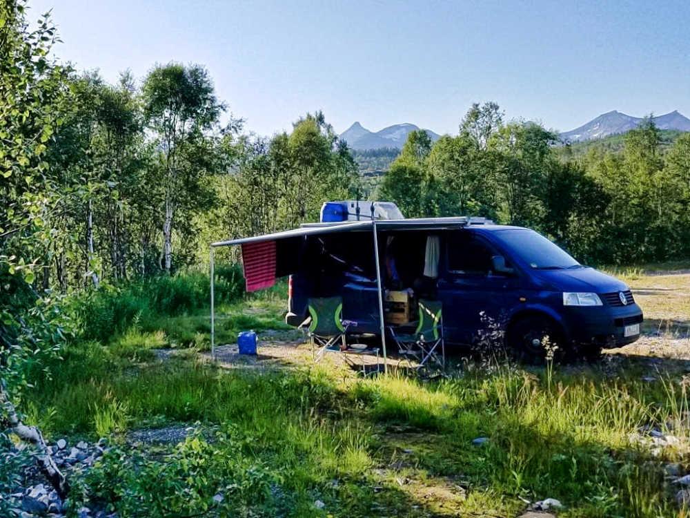 Markise Fiamma F35 Pro für den Campingbus und Van