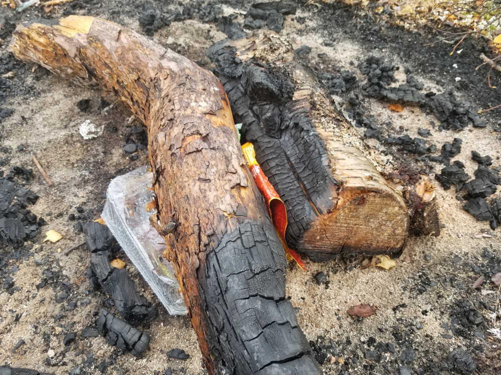 Mehr Verbote für Camper und Wohnmobile durch Müll und illegale Feuerstellen.